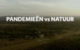 Afl. 10 Busi Taki: pandemieën vs. de natuur